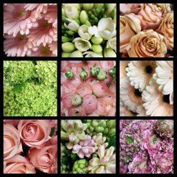 Cadeau floral